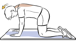 Woman on all fours doing neck lift exercise.